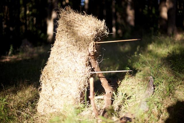 Arrows in straw bale