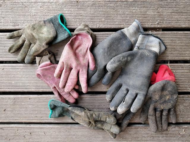 Worn garden gloves